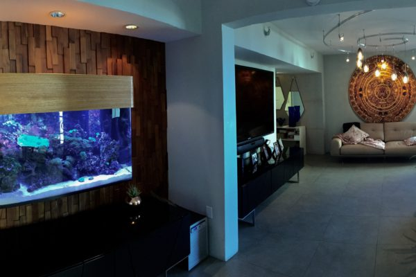 Custom in wall Reef